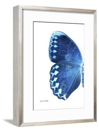 Miss Butterfly Formosana - X-Ray Left White Edition-Philippe Hugonnard-Framed Photographic Print