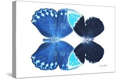 Miss Butterfly Duo Heboformo - X-Ray White Edition-Philippe Hugonnard-Stretched Canvas Print