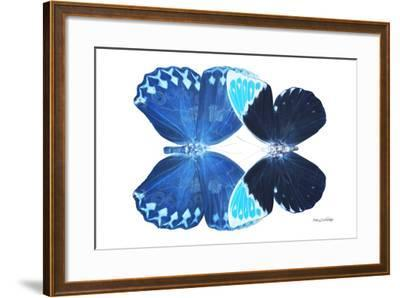 Miss Butterfly Duo Heboformo - X-Ray White Edition-Philippe Hugonnard-Framed Photographic Print