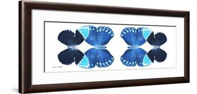 Miss Butterfly Duo Heboformo Pan - X-Ray White Edition II-Philippe Hugonnard-Framed Photographic Print