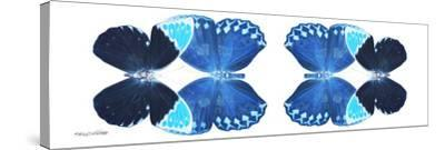 Miss Butterfly Duo Heboformo Pan - X-Ray White Edition II-Philippe Hugonnard-Stretched Canvas Print