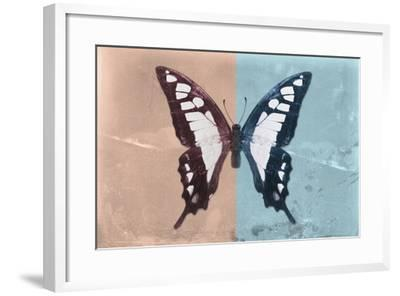 Miss Butterfly Cloanthus - Coral & Turquoise-Philippe Hugonnard-Framed Photographic Print