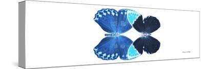 Miss Butterfly Duo Heboformo Pan - X-Ray White Edition-Philippe Hugonnard-Stretched Canvas Print