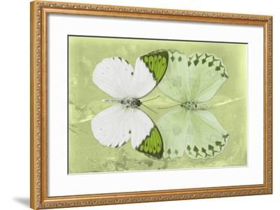 Miss Butterfly Duo Formoia - Lime Green-Philippe Hugonnard-Framed Photographic Print