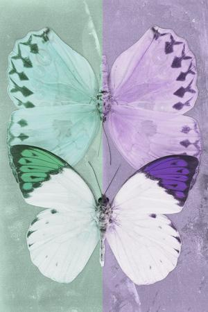 Miss Butterfly Duo Formoia - Coral Green & Mauve-Philippe Hugonnard-Framed Photographic Print