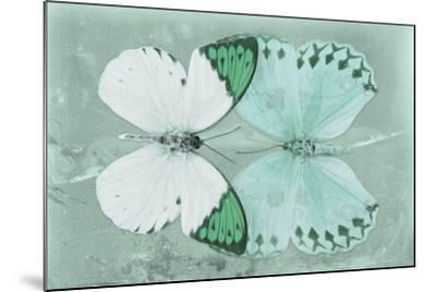 Miss Butterfly Duo Formoia - Coral Green-Philippe Hugonnard-Mounted Photographic Print