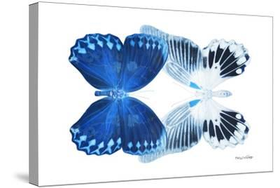 Miss Butterfly Duo Memhowqua - X-Ray White Edition-Philippe Hugonnard-Stretched Canvas Print