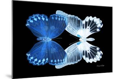Miss Butterfly Duo Memhowqua - X-Ray Black Edition-Philippe Hugonnard-Mounted Photographic Print