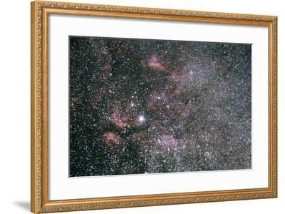 The Sadr Region Of Cygnus, Including IC 1318 And The Crescent Nebula-Mike Cavaroc-Framed Photographic Print