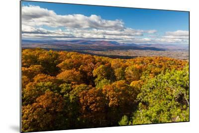 Forest Of Autumn Leaves Below The Bonticou Crag Trail In Shawangunk Mts. Mohonk Preserve, New York-Mike Cavaroc-Mounted Photographic Print
