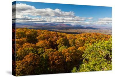 Forest Of Autumn Leaves Below The Bonticou Crag Trail In Shawangunk Mts. Mohonk Preserve, New York-Mike Cavaroc-Stretched Canvas Print