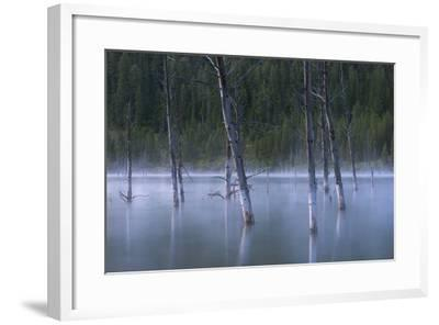 Early Morning Mist Rising Off Of Earthquake (Quake) Lake In SW Montana, Near West Yellowstone-Austin Cronnelly-Framed Photographic Print