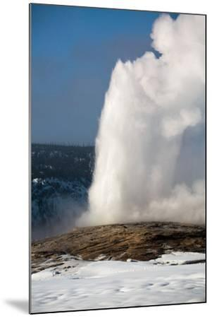 A Steamy Old Faithful In Winter In Yellowstone National Park-Ben Herndon-Mounted Photographic Print