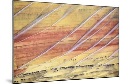 The Painted Hills In The John Day Fossil Beds National Monument In Eastern Oregon-Ben Herndon-Mounted Premium Photographic Print