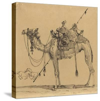 The Camel-Rodolphe Bresdin-Stretched Canvas Print
