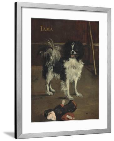 Tama, the Japanese Dog, c.1875-Edouard Manet-Framed Giclee Print