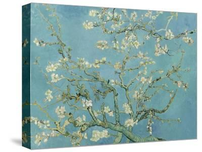 Almond Blossom, 1890-Vincent van Gogh-Stretched Canvas Print