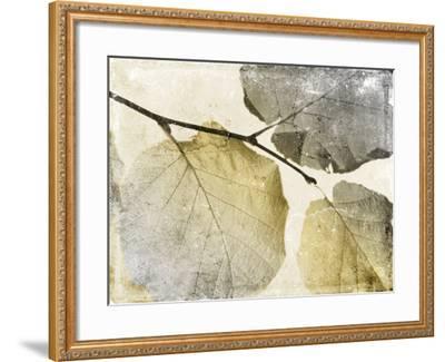 Classic Leaves-Jace Grey-Framed Art Print
