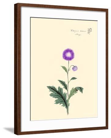 Kitsune Azami-May-Megata Morikaga-Framed Art Print