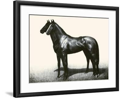 Omaha And Flares; A Brother Act-C.W. Anderson-Framed Art Print