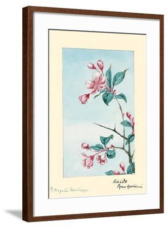 Kaido Pyrus Spectabalis-Megata Morikaga-Framed Art Print