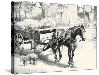 Nig; And Noon-C.W. Anderson-Stretched Canvas Print