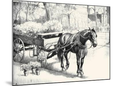 Nig; And Noon-C.W. Anderson-Mounted Art Print