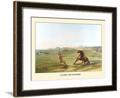 Catching The Wild Horse-George Catlin-Framed Art Print