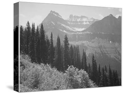 "Trees And Bushes In Foreground Mountains In Bkgd ""In Glacier National Park"" Montana. 1933-1942-Ansel Adams-Stretched Canvas Print"