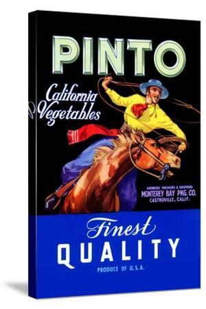 Pinto California Vegetable--Stretched Canvas Print