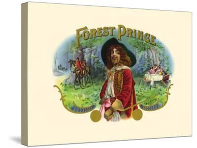Forest Prince--Stretched Canvas Print