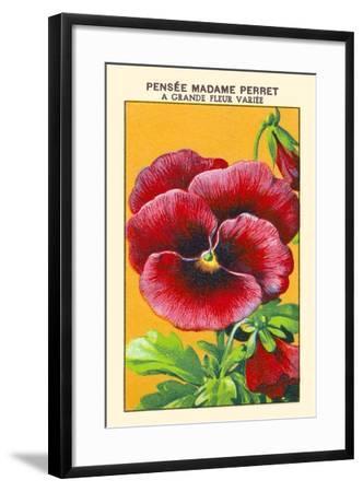 Pensee Madame Perret A Grande Fleur Variee--Framed Art Print