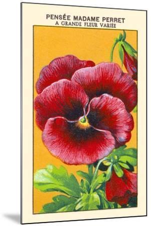 Pensee Madame Perret A Grande Fleur Variee--Mounted Art Print