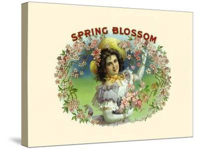 Spring Blossom- Witsch & Schmitt Lihto.-Stretched Canvas Print
