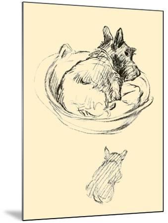 Janet-Lucy Dawson-Mounted Art Print