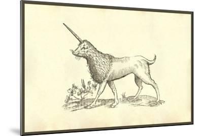 Unicorn (Camphurch Effigies)-Ulisse Aldrovandi-Mounted Art Print