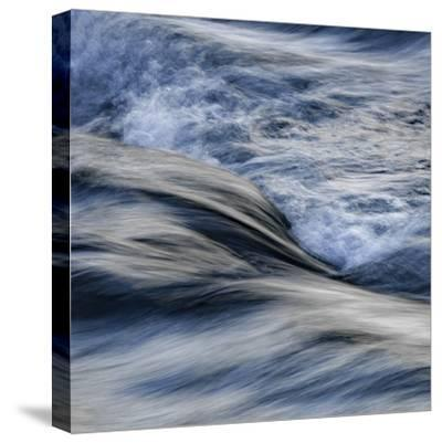 The Flow Of Life-Doug Chinnery-Stretched Canvas Print
