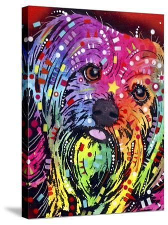 Yorkie-Dean Russo-Stretched Canvas Print