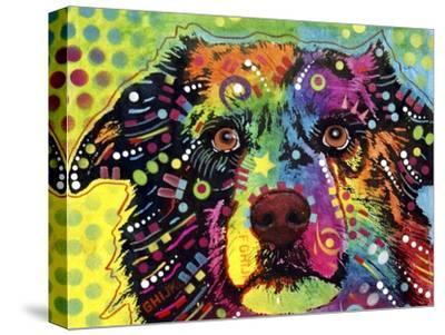 Straight Aussie-Dean Russo-Stretched Canvas Print