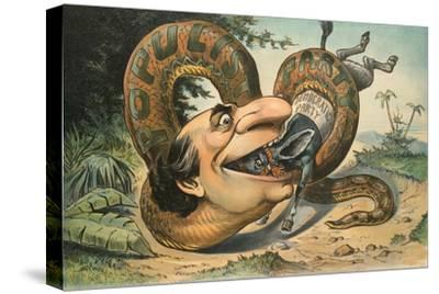 Swallowed!-JS Pughe-Stretched Canvas Print