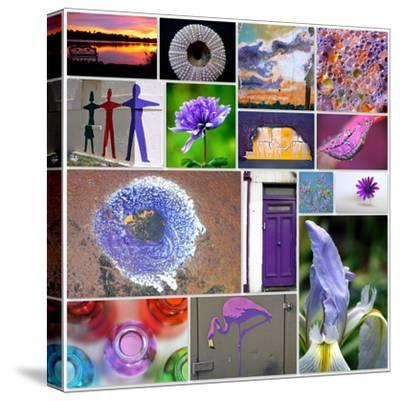 Purple Blossom Collage-Gail Peck-Stretched Canvas Print
