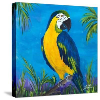 Island Birds Square II-Julie DeRice-Stretched Canvas Print