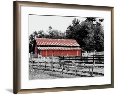 BW Rustic Barn-Gail Peck-Framed Art Print