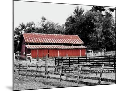 BW Rustic Barn-Gail Peck-Mounted Art Print