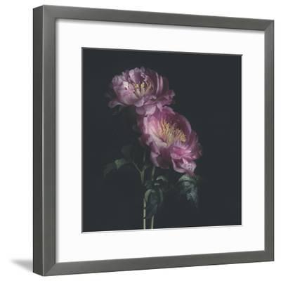 Dark Florals-Sarah Gardner-Framed Photo