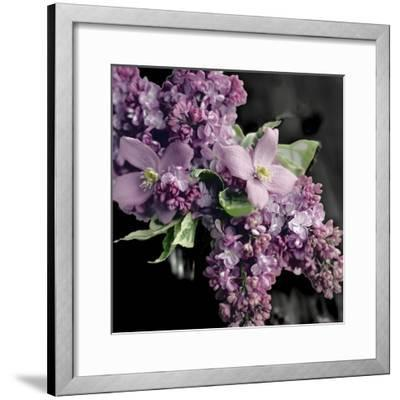 Fresh Evening Bloom-Sarah Gardner-Framed Art Print