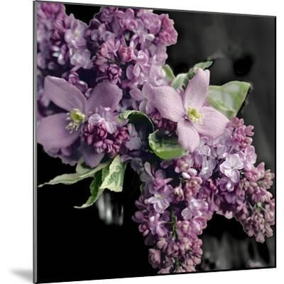 Fresh Evening Bloom-Sarah Gardner-Mounted Art Print