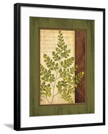 Fern Grotto IV-Delphine Corbin-Framed Art Print