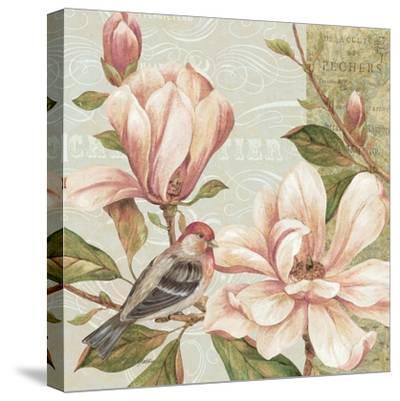 Magnolia Collage II-Pamela Gladding-Stretched Canvas Print