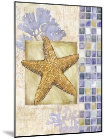 Mosaic Shell Collage II-Paul Brent-Mounted Art Print